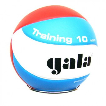"""Мяч волейбольный GALA """"Training 10"""" BV5561S PU"""