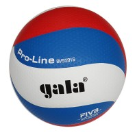 Мяч волейбольный Gala PRO-Line Colour синтетическая кожа 5591