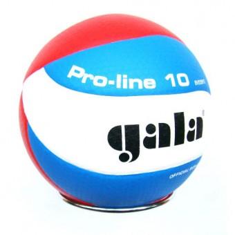 Мяч волейбольный GALA Pro-Line 10 BV5581S PU(микрофибра)