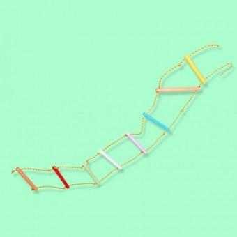 Лестница веревочная (цветная)