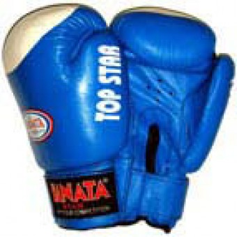 Перчатки бокс Danata Top Star 10,12унц (кожа)